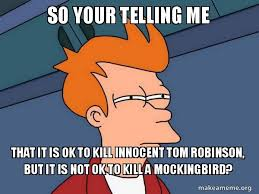 To Kill A Mockingbird Meme - so your telling me that it is ok to kill innocent tom robinson but