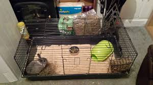 Large Bunny Cage For Sale Dwarf Rabbit Cage U0026 Accessories Preston Lancashire