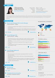 Resume Manager Key Account Manager Professional Resume Custom Resume Original