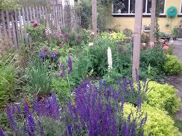 garden layout designs small large courtyard gardens