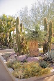 Botanical Gardens In Las Vegas Springs Preserve Las Vegas Local Adventurer