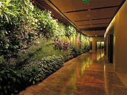 Vertical Gardens Miami - patrick blanc u0027s vertical gardens art and ecology in the city