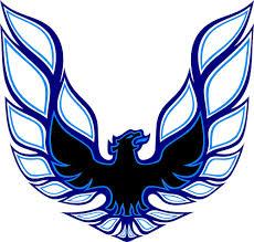 firebird screaming eagle full color hood decal 26 75