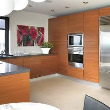 kitchen cabinet new jersey luxury kitchen in fort nj cesar nyc kitchens modern