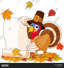 thanksgiving turkey holding scroll vector photo bigstock