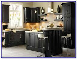 kitchen colors that go with black cabinets painting home