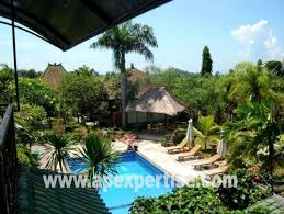 hotel bungalow resort for sale in gianyar asia pacific expertise