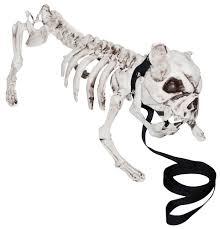 english bulldog halloween costumes english bulldog skeleton prop 323408 trendyhalloween com