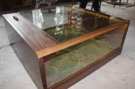 glass shadow box coffee table diy shadow box coffee table writehookstudio com