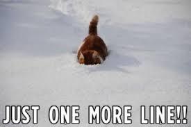 Bear Cocaine Meme - image 243754 cocaine bear know your meme