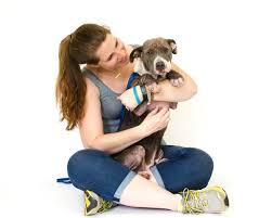 the dog blog a central florida dog blog rescues in specific
