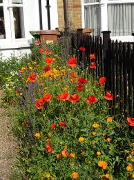 Gardening Ideas For Small Balcony by Garden Design Garden Design With Apartment Balcony Garden