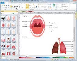Home Design Software Mac Free Trial Human Organs Diagrams Free Download Human Organs Diagram Software