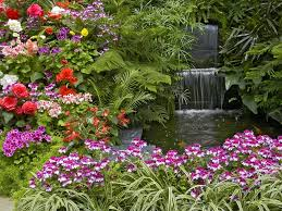 pictures of summer flowers animated beautiful flower garden