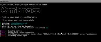 working with uaas cli set up umbraco cloud documentation