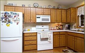 Kitchen Cabinet Types Kitchen Design Ideas Top 10 Cabinet Materials Home Decor Kitchen