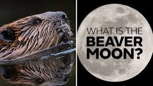 Can You See The Us Flag On The Moon When Is The Next Full Moon March U0027s Worm Moon Explained And The