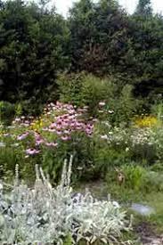 Botanical Gardens South Carolina Botanical Gardens Clemson Sc South Carolina Botanical Garden At