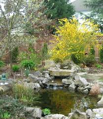 building waterfalls fish ponds best waterfall 2017