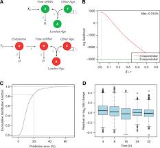 timescales and bottlenecks in mirna u2010dependent gene regulation