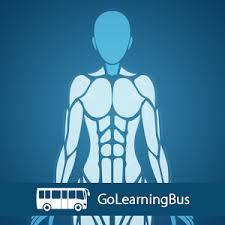Google Human Anatomy Human Body Anatomy Android Apps On Google Play