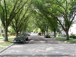 resume help calgary calgary city news blog september 2012 residential street in an established calgary community
