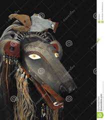 american indian bear mask isolated stock photography image