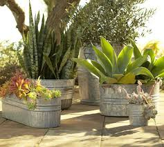 Galvanized Decor Galvanized Metal Tubs Buckets U0026 Pails As Planters Driven By Decor
