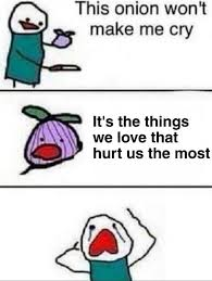 We Love Meme - this onion won t j make me cry it s the things we love that hurt us
