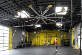 gym ceiling fans are gym essentials if they are big fans