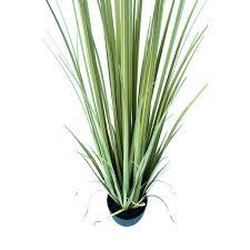 Yucca Wohnzimmer Künstliche Pflanze Gras Kunstpflanze Im Topf Maco Shop