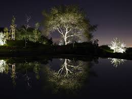 Custom Landscape Lighting by Landscape Lighting Designer Landscape Lighting