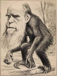 theory of evolution development history of evolutionary theory