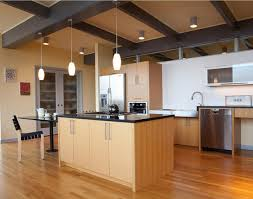 aging in place remodeling houston legal eagle contractors