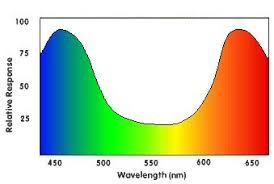 What Color Of Visible Light Has The Longest Wavelength Light And Color