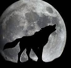 wolf and moon by misspadfoot 88 on deviantart