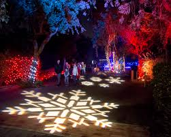 Zoo Lights Az by Christmas Lights In San Francisco Home Design Ideas