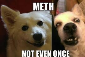 Meth Meme - meth not even once meme others