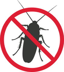 Bed Bug Exterminator Detroit Pest Control Solutions In Michigan Griffin Pest Solutions