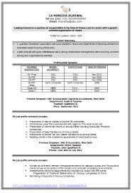 Job Objective In Resume by Sample Template Of An Experienced Chartered Accountant Resume