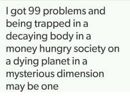Money Problems Meme - i got 99 problems and being trapped in a decaying body in a money