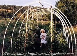 how to build a pvc hoophouse for your garden hightunnels org