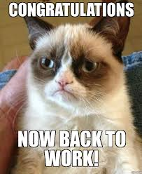Back To Work Meme - grumpy cat congratulations now back to work weknowmemes