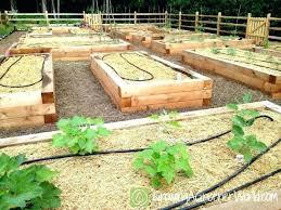Veg Garden Ideas Elevated Vegetable Garden Plans Hydraz Club
