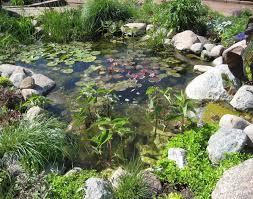 aquascape how to build a small pond small garden pond liners
