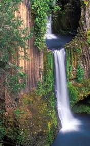 Oregon waterfalls images An ancient waterfall hidden in the oregon woods need to put this jpg