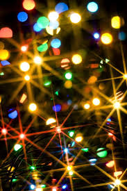 Toledo Zoo Christmas Lights by 308 Best Holiday Lights Images On Pinterest Christmas Time