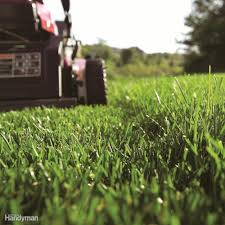 tips for buying a walk behind lawn mower family handyman