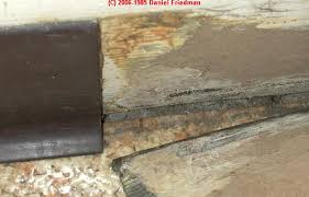 Black Mould In Bathroom Dangerous What Does Black Mold Look Like Toxic Black Mold Growth