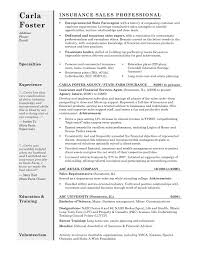 Resume Template Best by Free Resume Templates Clean And Professional Cv Template Sample